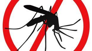 Пръскат срещу комари в община Гулянци на 19 май