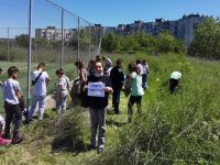 """Ученици и учители от ОУ """"Св. Климент Охридски"""" – Плевен организираха пролетно почистване /снимки/"""