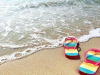 Две училища в област Плевен са сред първите одобрени за безплатна ваканция