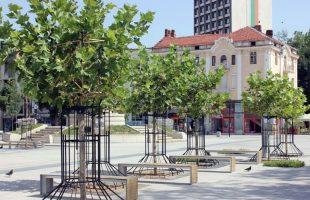 Започва оформянето на дървесните корони в района на новоремонтираната пешеходна зона на Плевен