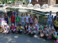 """Децата от ДГ """"Чучулига"""" – Плевен на екскурзия в зоопарк """"Гергана"""""""