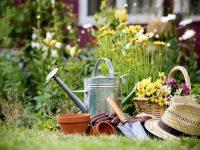 1 август – Ден на градинаря в България