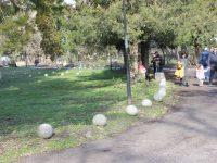 Общината кани плевенчани да се включат днес в инициатива с награди за Световния ден на ходенето